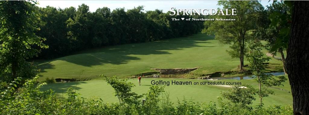 home_golf